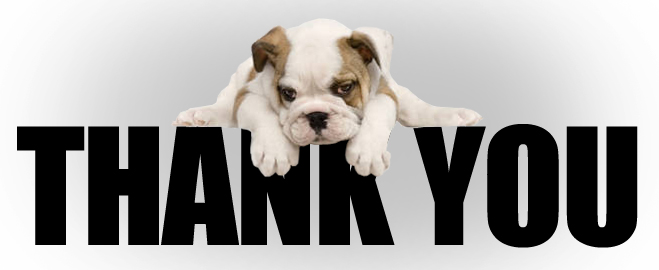 Thank-You-Dog